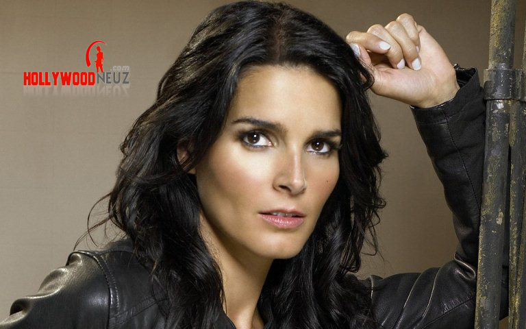 actress, bio, biography, boyfriend, celebrity, female, hollywood, husband, Angie Harmon, model, profile, singer