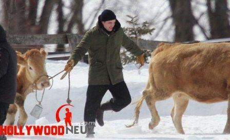 hollywood gossip, hollywood latest news, hollywood news, hollywood news today, Robert Pattinson, gets up, close, cattle, set, film
