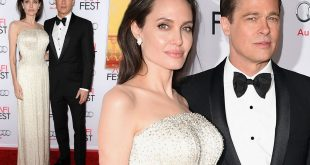 Angelina Jolie And Brad Pitt Split, What Is The Reason Behind This