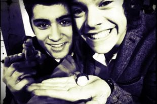Zayn Malik Shows Love For Harry.